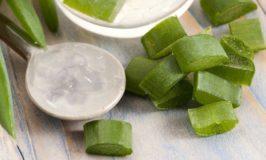 5 Tips When Buying Organic Aloe Vera Gels