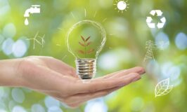 How to Be More Sustainable in Your Business