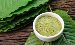 Regular Garden Herbs Could Be All You Need to Eradicate Chronic Stress