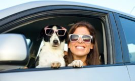 Think of Traveling with Your Pet? Reconsider!